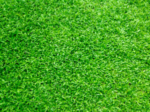A picture of artificial grass