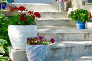 A picture of potted plants on garden stairs